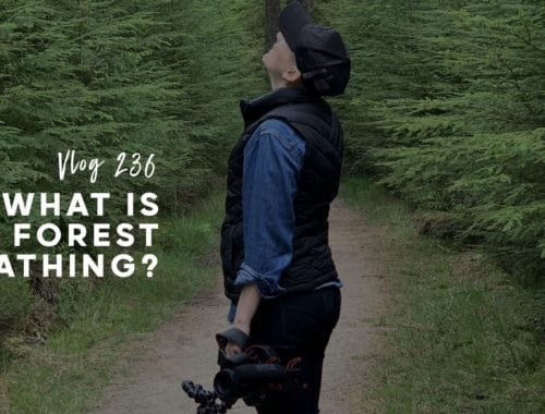 FOREST BATHING FB